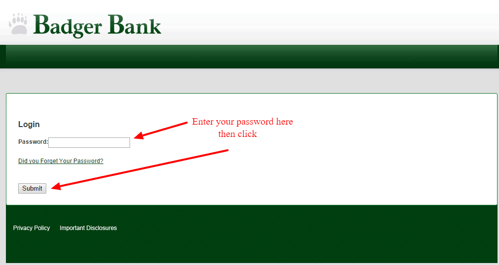 Badger Bank Account Login