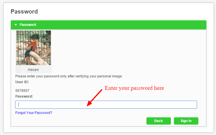 Enter your password Everett Co operative Bank
