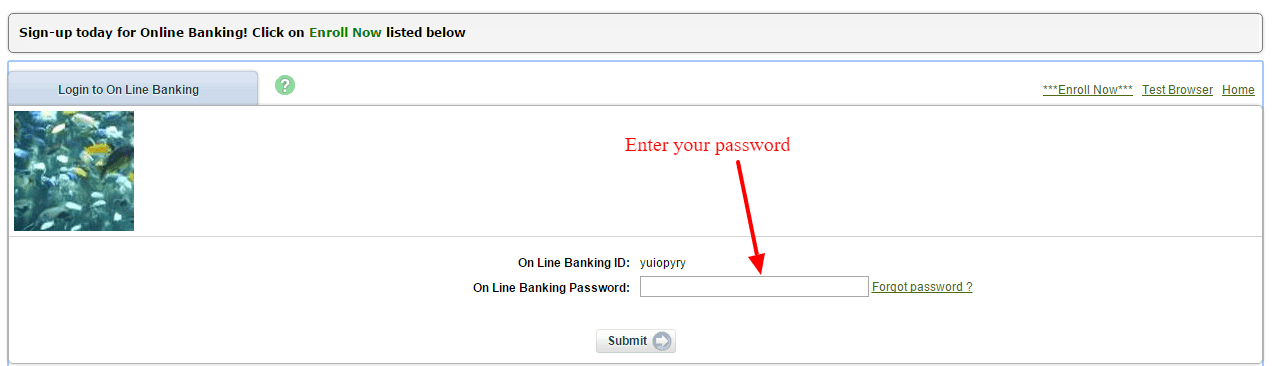 Glacier Bank Online Banking Password