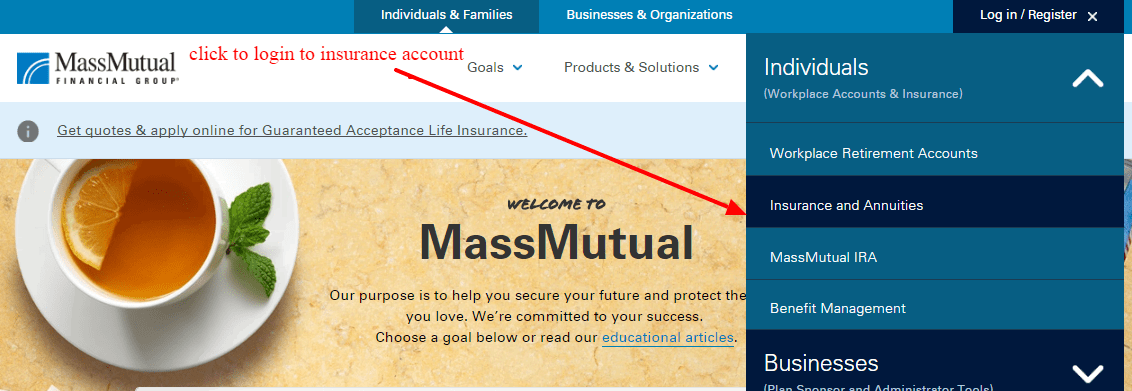 Mass Mutual Insurance login