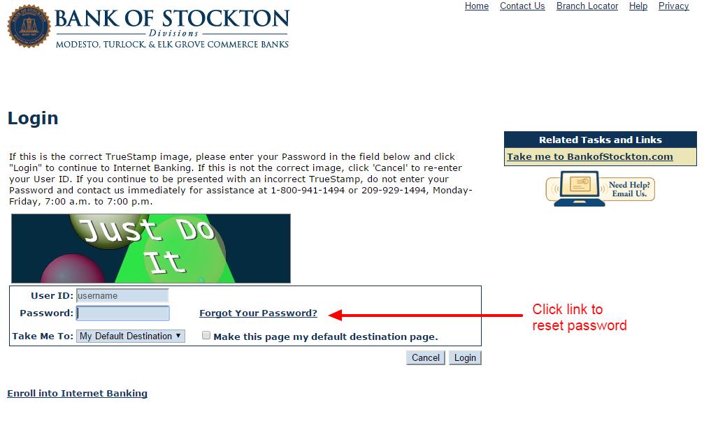 stockton renew 1